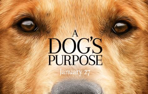 A Dog S Purpose Pirate Bay